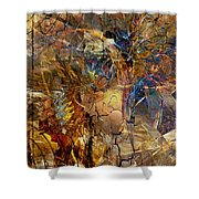 Abstract 404-08-13 Marucii Shower Curtain
