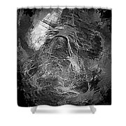 Abstract 409 - Marucii Shower Curtain
