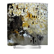 Abstract 411111 Shower Curtain