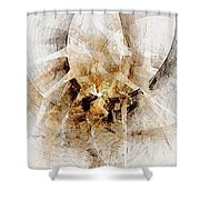 Abstract 414-08-13 Marucii Shower Curtain