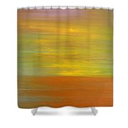 Abstract 418 Shower Curtain