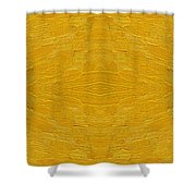 Abstract 494 Shower Curtain