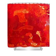 Abstract 68 Shower Curtain