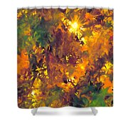 Abstract 98 Shower Curtain