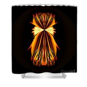 Abstract A031 Shower Curtain