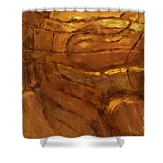 Behold - Abstract Art Shower Curtain