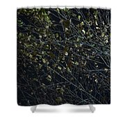 Abstract Background Of Tree At Night Shower Curtain
