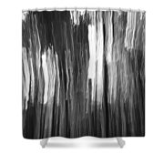 Abstract Black And White Composition Shower Curtain