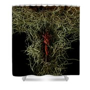 Abstract Christmas Manger Shower Curtain