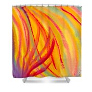 Abstract Colorful Lines Shower Curtain