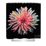 Abstract Chrysanthemum Shower Curtain