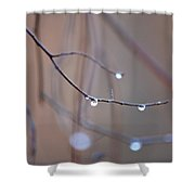 Abstract Dew Drops 2013 Shower Curtain