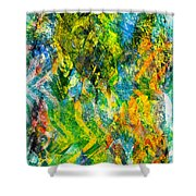 Abstract - Emotion - Admiration Shower Curtain
