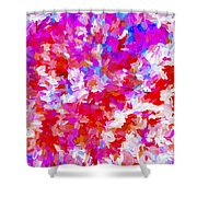 Abstract Series Ex2 Shower Curtain