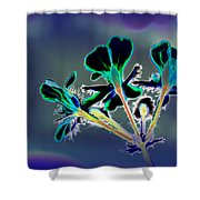Abstract Flower - Digital Abstract Shower Curtain