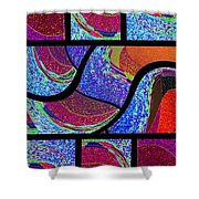 Abstract Fusion 168 Shower Curtain