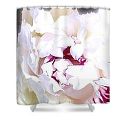 Abstract Fusion 213 Shower Curtain