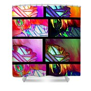 Abstract Fusion 214 Shower Curtain