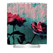 Abstract Hdr Roses Shower Curtain
