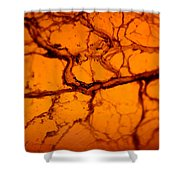 Abstract In Amber Shower Curtain