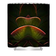Nature In Abstract Succulent Plant 1 Shower Curtain