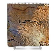 Abstract In Old Wood Shower Curtain