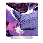 Abstract In Purple Shower Curtain