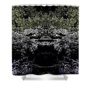 Abstract Kingdom Shower Curtain