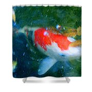 Abstract Koi 3 Shower Curtain