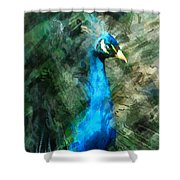 Abstract Marker Sketch Of Peacock Shower Curtain