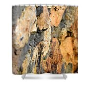 Abstract Natural Stone Shower Curtain