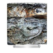 Abstract Nature 13 Shower Curtain