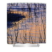 Abstract Nature At Sunset Shower Curtain