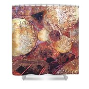 Abstract Naturescape Shower Curtain