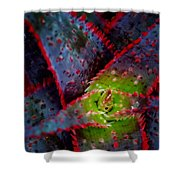 Abstract Of Bromeliad Shower Curtain