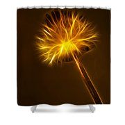 Abstract Of Nature 1 Shower Curtain