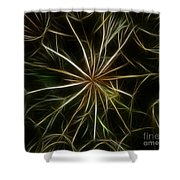 Abstract Of Nature 2 Shower Curtain