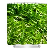 Abstract Of Nature 3 Shower Curtain