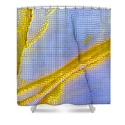 Abstract Of Picasso Jasper Shower Curtain