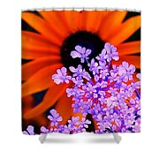 Abstract Orange And Purple Flower Shower Curtain