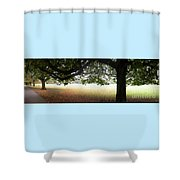 Abstract Panorama Of Landscape Triptych  Shower Curtain
