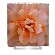 Abstract Peach Rose Shower Curtain
