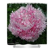 Abstract Pink Flower Shower Curtain
