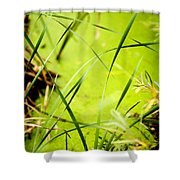 Abstract Pond Scum Shower Curtain