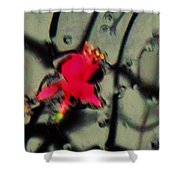 Abstract Red And Black Shower Curtain