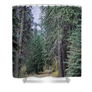 Abstract Road In The Wilderness Shower Curtain