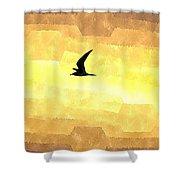 Abstract Seagull Flight Shower Curtain
