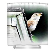 Abstract Songbird Shower Curtain