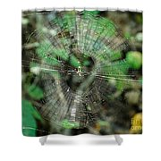 Abstract Spider Web Shower Curtain