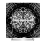 Abstract Structure 2 Shower Curtain